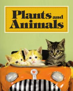 Plant and Animals le 17 novembre 2012 à l'Impérial de Québec