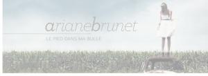 Ariane Brunet / « Plus j'me cherche, moins j'me trouve »