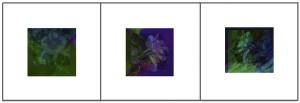 Des couleurs de la nature… à la nature des couleurs par Élise Dumais, le samedi 13 octobre 2012 à 14 h.