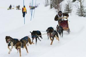 le Classique hivernal de Valcartier 2013