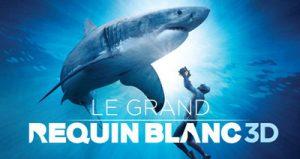Le Grand Requin Blanc 3D