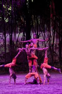 Les acrobates de Odysséo