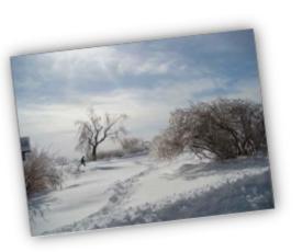 Goûtez aux plaisirs de l'hiver sur les Plaines