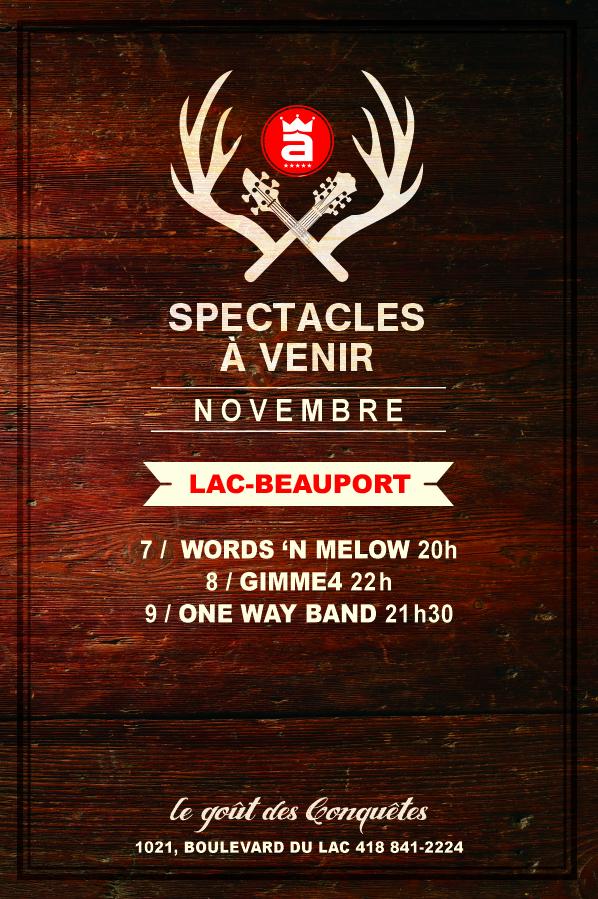5nov2013_Lac-Beauport
