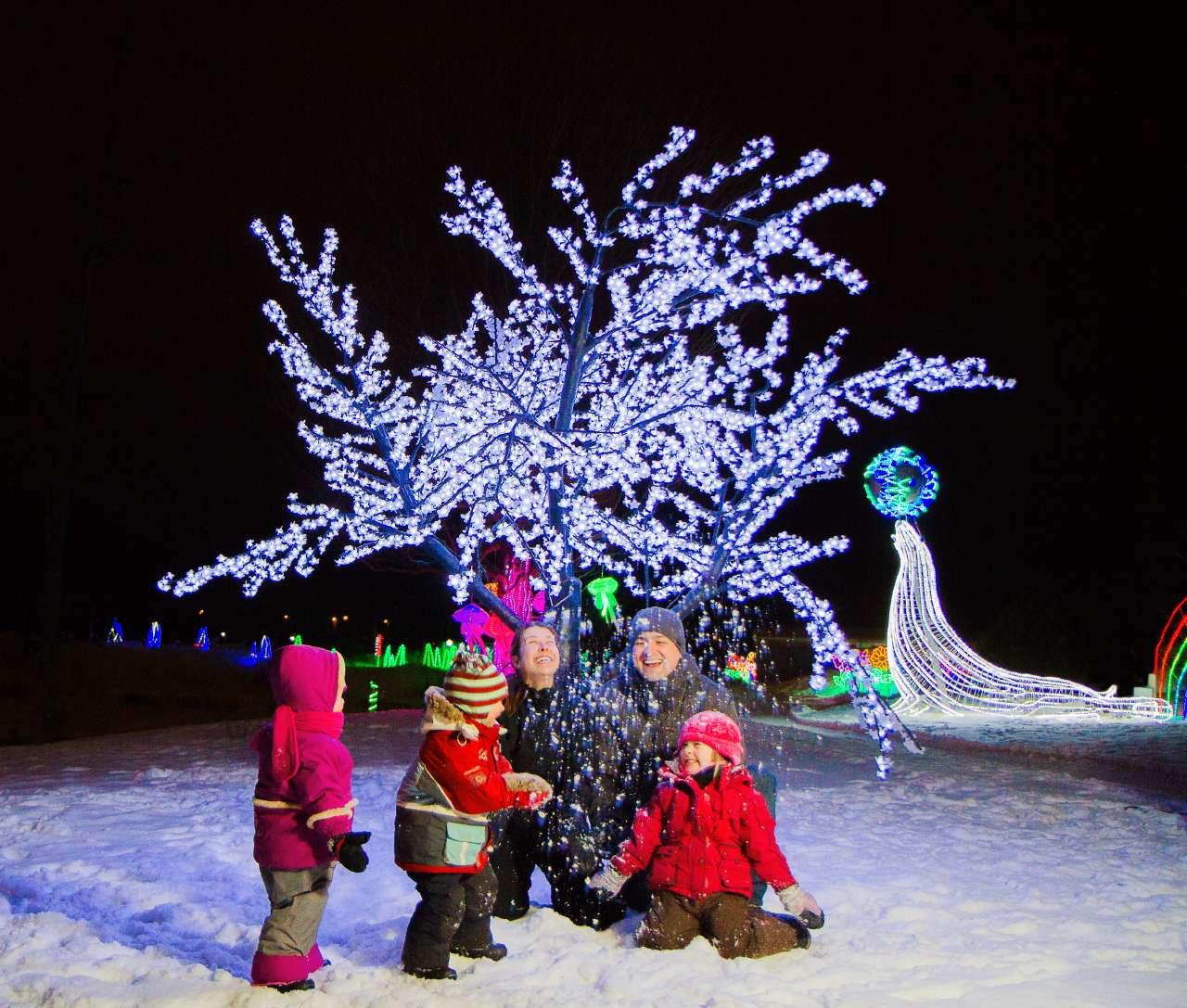 Festi Lumière à l'Aquarium du Québec