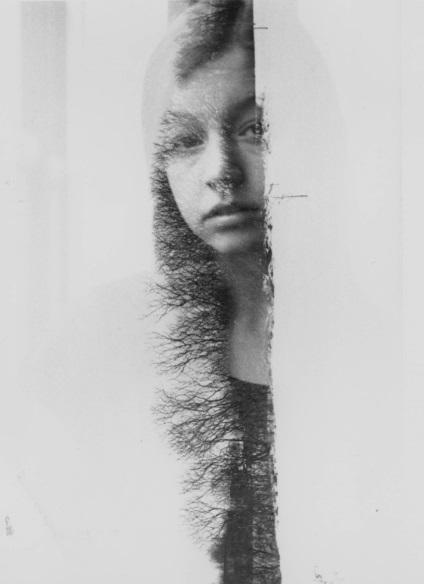 Oeuvre de Stéphanie Pineau