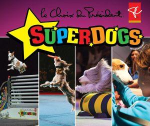Les SuperDogs