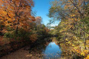 Magnifiques couleurs d'automne au parc Jean-Drapeau © photo: Gilles Proulx