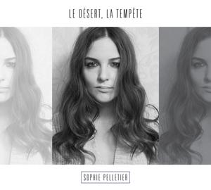 Sophie Pelletier - Le désert, la tempête