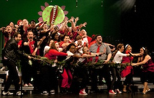 «Little Shop of Horrors» du spectacle «Forever Broadway» (2014)