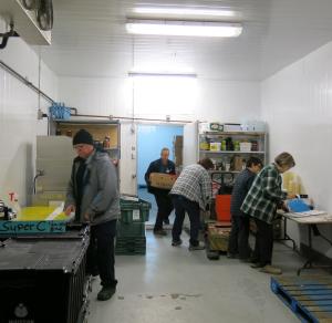Employé-es et bénévoles de Moisson Québec en plein travail