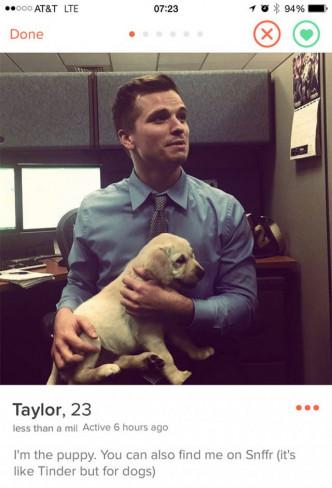 Un profil avec des animaux